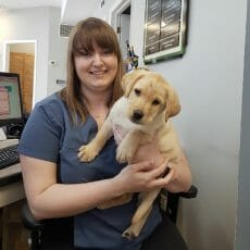Cassandra Walsh holding a dog