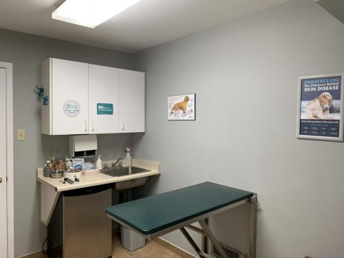Dog examination room at Fairmont Animal Hospital